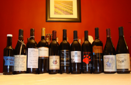 Line up of Montepulciano wines tasted.
